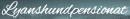 Lyanshundpensionat logo