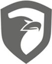 Gold Security logo