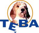 TEBA logo