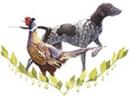 Veterinär Mila Laago logo