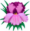 Irenes Medicinska Fotvård logo