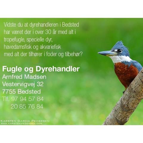 Fugle & Dyrehandler Arnfred M Madsen logo