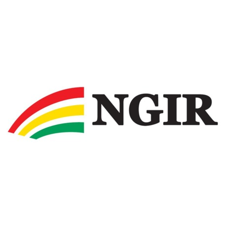NGIR Kjevikdalen logo