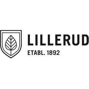 Lillerudsgymnasiet AB logo