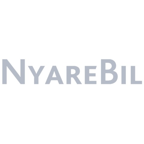 NyareBil i Sverige AB logo
