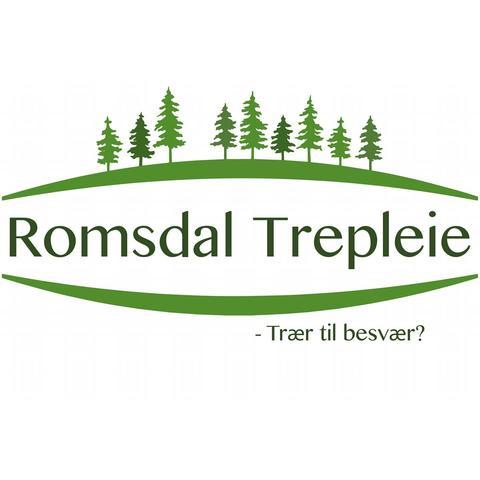 Romsdal Trepleie AS logo