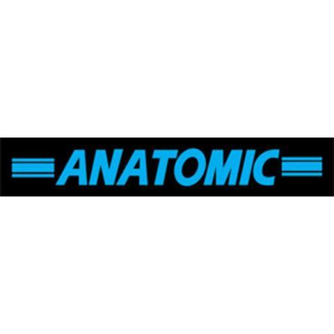 Anatomic-Jan Ritzer logo
