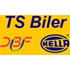 TS Biler logo