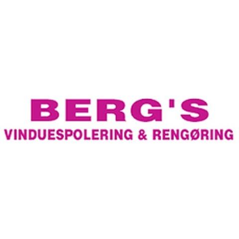 BVR Service IVS logo