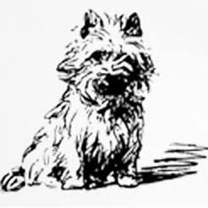 Odense Hundesalon logo