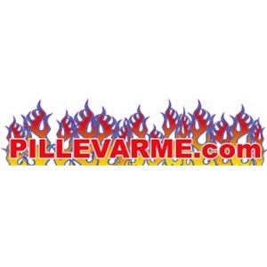 Pillevarme ApS logo