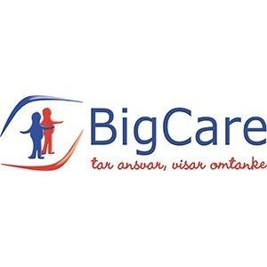 Big Care AB logo