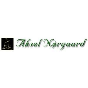 Aksel Nørgaard logo