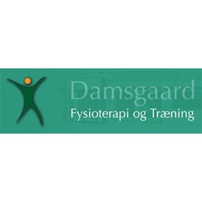 Damsgaard Fysioterapi & Træning logo