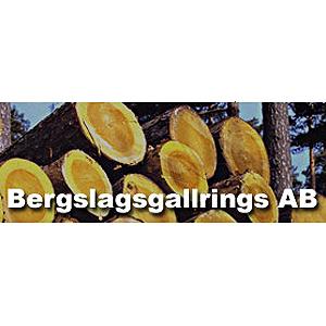 Bergslagsgallrings AB logo