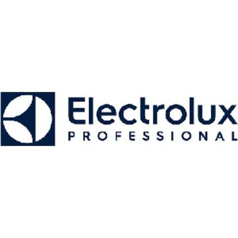 Electrolux Professional AB (Publ) logo