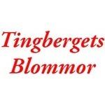 Tingbergets Blommor HB logo