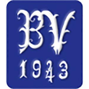 Bjerge Vognmandsforretning ApS logo