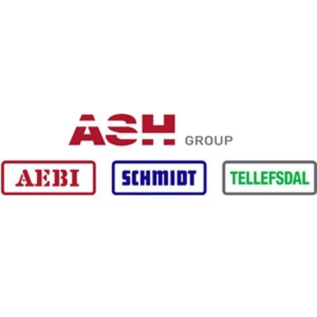 Aebi Schmidt Norge AS logo