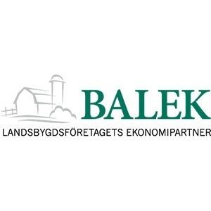 Balek logo