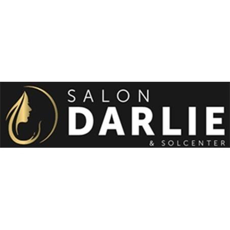 Salon Darlie v/ Tina Darlie Schmidt logo