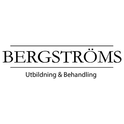 Bergströms Kunskapsföretag AB logo