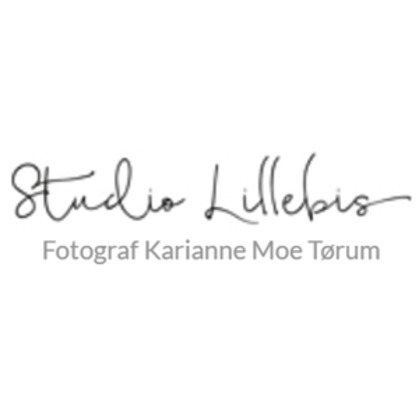 Studio Lillebis logo