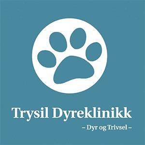 Trysil Dyreklinikk AS logo