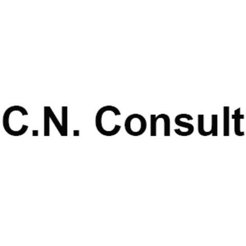 C.N. Consult v/Connie Nollin logo