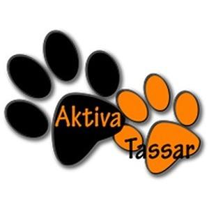 Aktiva Tassar logo