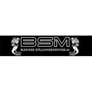 Tyringe Ställningsmontage AB logo