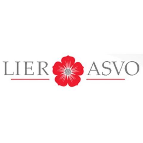 Lier ASVO AS logo