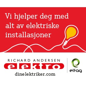 Richard Andersen Elektro AS logo