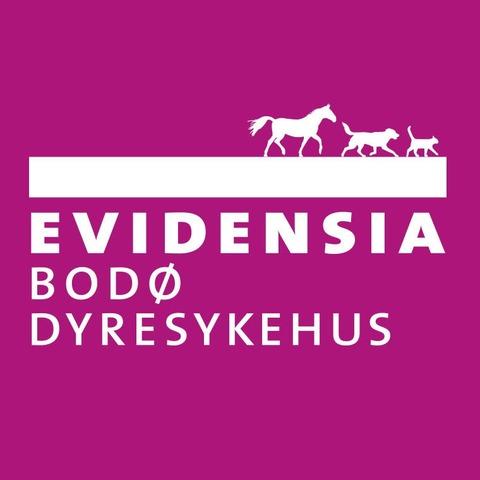 Evidensia Bodø Dyresykehus logo