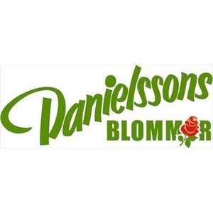 Danielssons Blommor AB logo