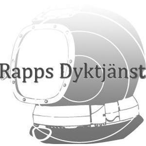 Rapps Dyktjänst AB logo