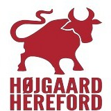 Højgaard  Hereford logo