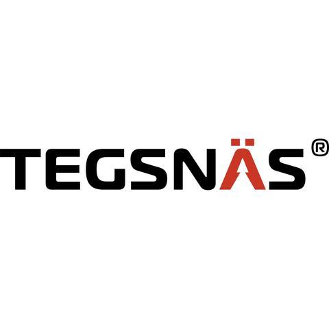 Tegsnäs Group AB logo