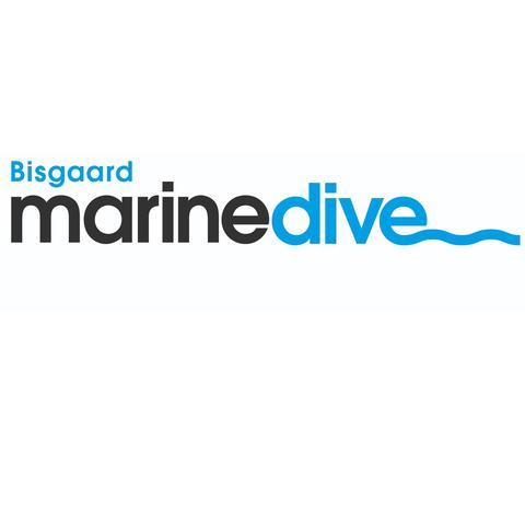Bisgaard Marine Dive ApS logo