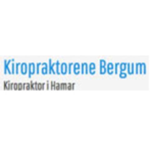 Kiropraktor Bergum logo