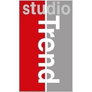 Studio Trend AB logo