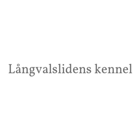 Sandras Hundsalong logo