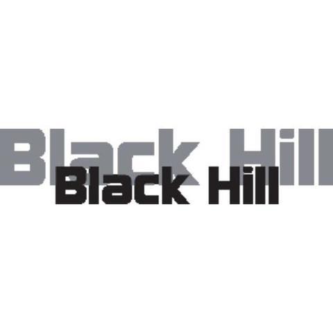 WSI AB / Blackhill logo