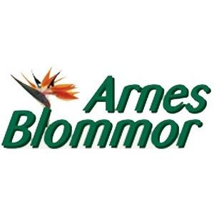Arnes Blommor logo
