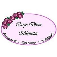 Carpe Diem Blomster logo
