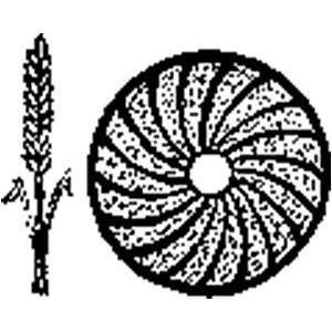 Hälla Kvarn AB logo