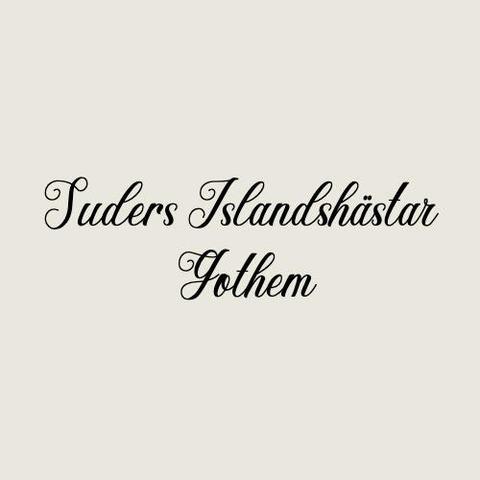 Suders islandshästar logo
